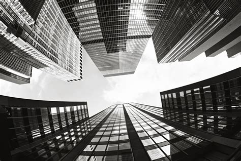 buy skyscrapers black  white wall mural
