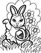 Coloring Bunny Pages Printable sketch template