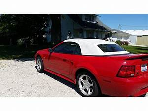 1999 Ford Mustang GT Convertible by Owner in Kewanee, IL 61443