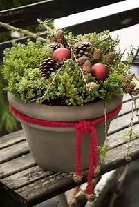 Pinterest Ohne Anmeldung Garten : winterdeko mit pflanzen herbstbepflanzung garten und winterdeko ~ Watch28wear.com Haus und Dekorationen