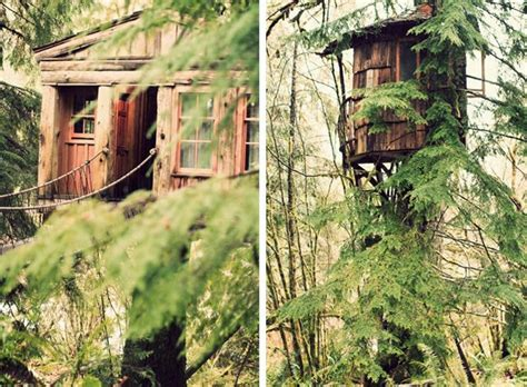 Best Images About Tree House On Pinterest