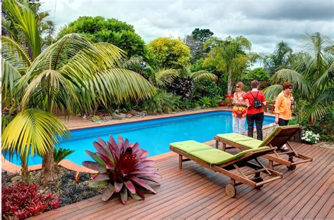 tropical plants  modern swimming pool  house