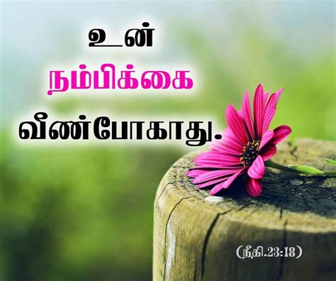 Let these inspirational quotes about god inspire you to put your trust and have faith in him. Download Tamil Bible Words Wallpaper Free Download Gallery