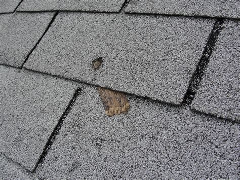evaluating asphalt shingles enviroquest