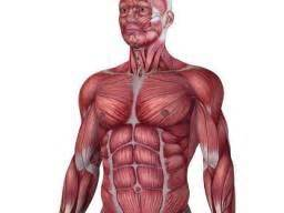 Muscular Dystrophy  Causes  Symptoms  And Treatments
