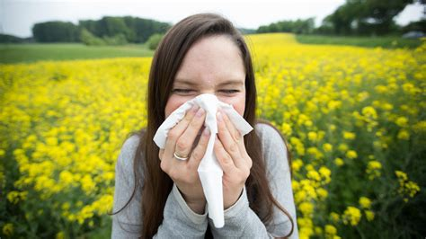 Sié E Massant Allergie Symptome Was Sie über Allergien Wissen Sollten