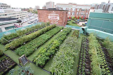 Green City Growers | Urban Farming | Fenway Farms