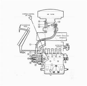 Simms Fuel Injection Pump Diaphragm And Piston For Spe3a