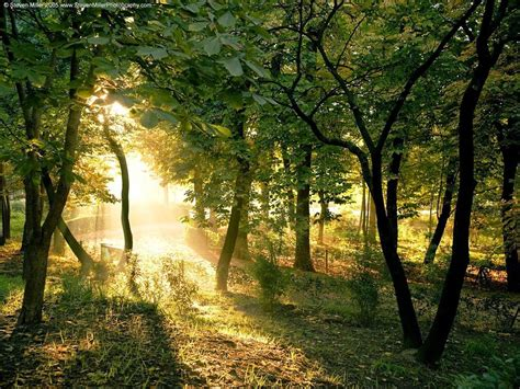 hd nature scenery wallpapers  desktop