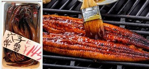 cuisiner l anguille unagidon unadon un plat à base d 39 anguille sur du riz