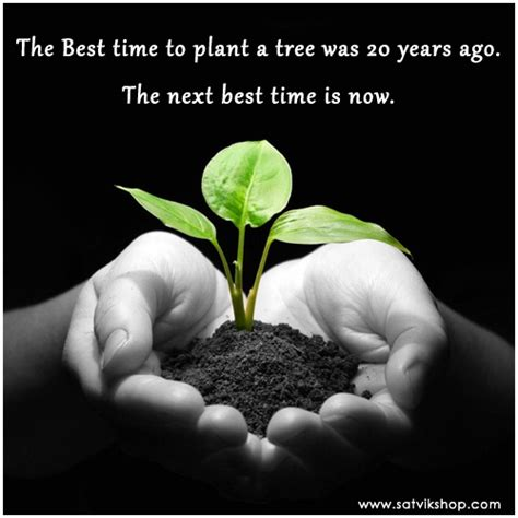 the next best time to plant trees is now satvik quotes