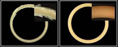 Kalrez Dupont Processes Semiconductor Rings