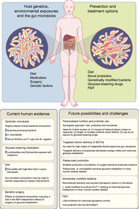 gut microbiome   target  prevention