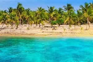nature, Beach, Tropical, Sea, Palm Trees, Sand, Turquoise ...