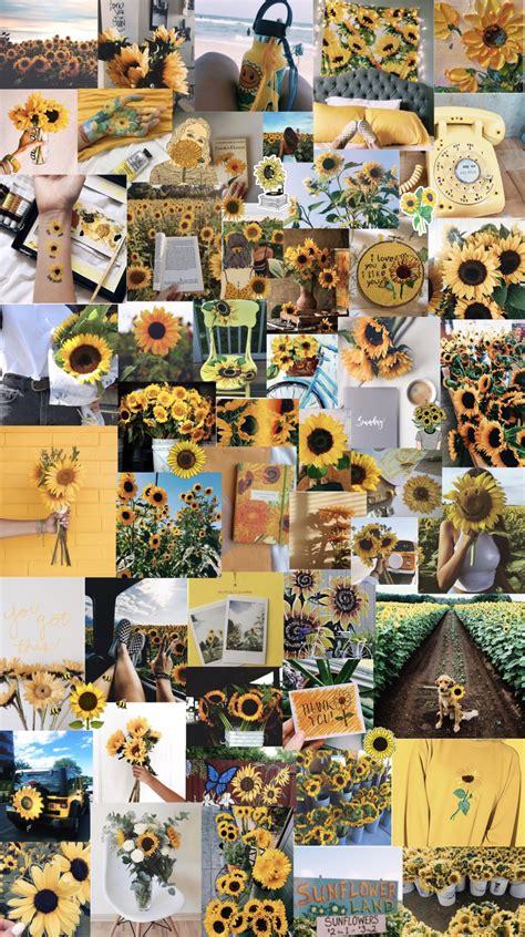 sunflowers aesthetic background sunflower wallpaper