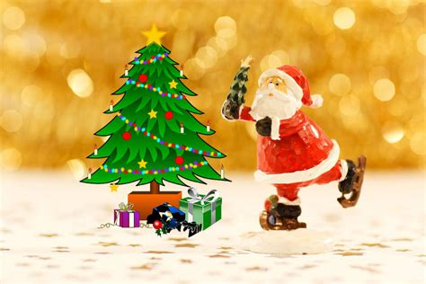 best places to buy a christmas tree in delhi ncr hangouts