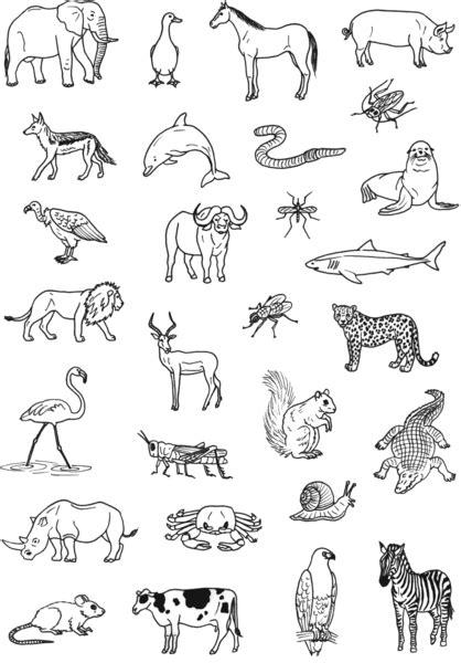 coloriage animaux omnivores ancenscp