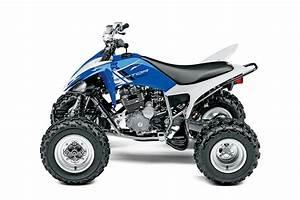 Buyer U0026 39 S Guide  2015 Sport Quad Buyer U0026 39 S Guide
