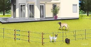 Cloture Chien Jardin : choisir sa cl ture lectrique pour animaux chien chevaux gamm vert ~ Melissatoandfro.com Idées de Décoration
