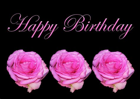 Happy Birthday Roses Images The Gallery For Gt Happy Birthday Pink Roses Images