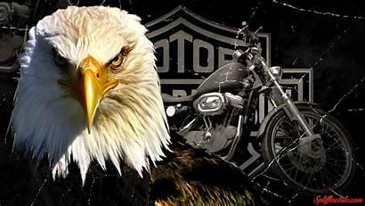 Harley Davidson Wallpapers Background Screensavers Kenikin 1080