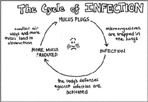 Lung Mucus Plug Diagram