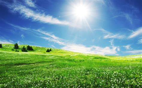 The Smile Of Sun Over The Beautiful Nature Hd Wallpaper ...