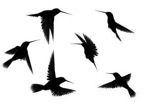 Black Flying Bird Silhouette