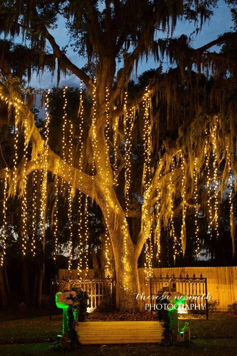 twinkle light tree 21 best lock bridge bakers ranch wedding ceremony