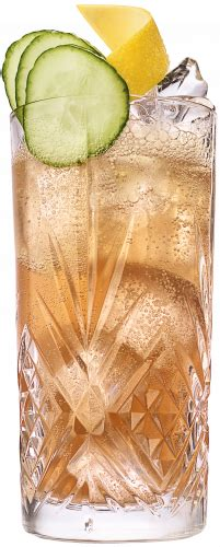 Gin Buck Cocktail Recipe Gin And Ginger Ale Drink