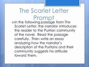 Scarlet Letter Theme Essay help desk problem solving questions uk best essay writers evacuees homework help