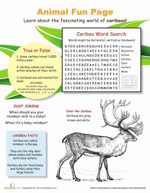 with caribou worksheet education
