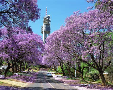 Pretoria (tshwane