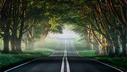 4k Forest Road Wallpapers Misty