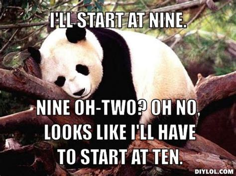 Sex Panda Meme - 97 best images about funny bears memes and pics on pinterest black friday meme bear meme and