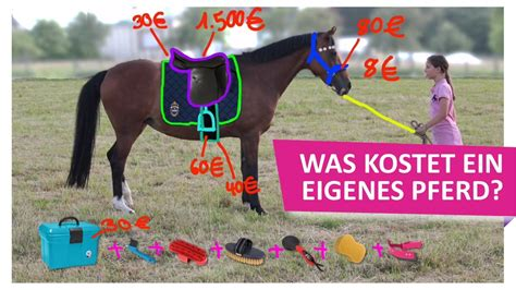 wie viel kosten pferde  kostet ein eigenes pferd teil