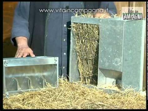 come costruire una gabbia per conigli alimentazione coniglio come dosare fieno e mangime