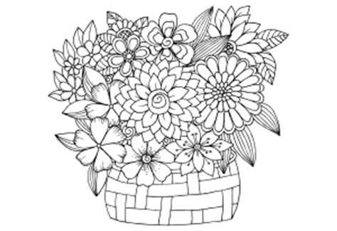 Flowers Advanced Archives KidsPressMagazine com