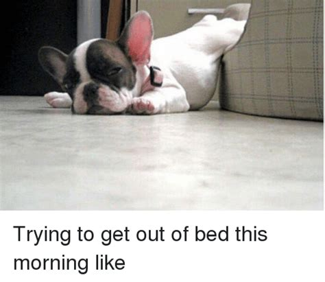 Get Out Of Bed Meme - waking up forums at psych central
