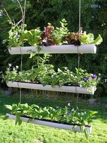 balkon regenrinne vertikalen kräutergarten anlegen 5 platzsparende ideen