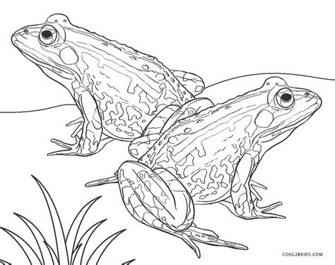 printable frog coloring pages  kids coolbkids