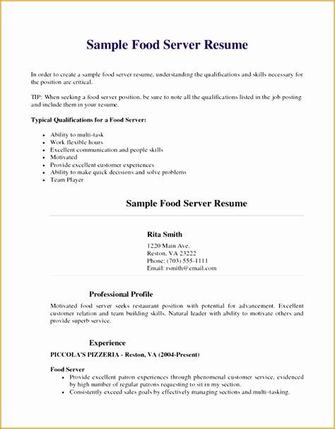 Server Resume Template by 8 Server Resume Template Free Free Sles Exles