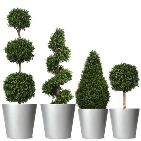 Artificial Box Topiary That Looks As Good As The Real