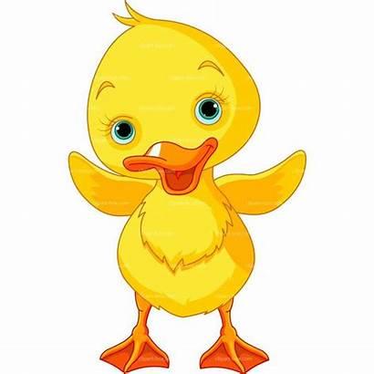 Duck Clipart Duckling Cartoon Yellow Happy Clip