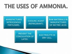 Ammonia Its Salts