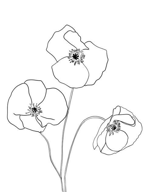 poppies framed art print  minimaliste vector black