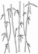Bamboo Coloring sketch template