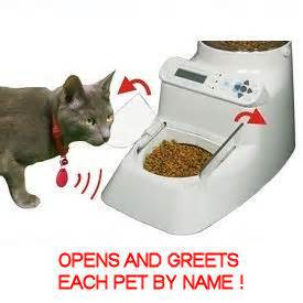 feeder for cats best automatic cat feeders food dispensers reviews