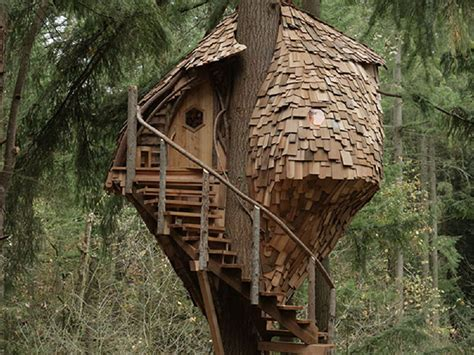 "Animal Planet's ""treehouse Masters"" Swings In With New"