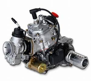 Go Kart Motor Kaufen : 125 max dd2for carting 32 6 hp rpm rotax ~ Jslefanu.com Haus und Dekorationen